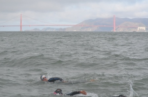 Swimming by the Golden Gate