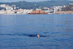 18 Julio 9-10AM Mauricio pasando por Tossa de Mar